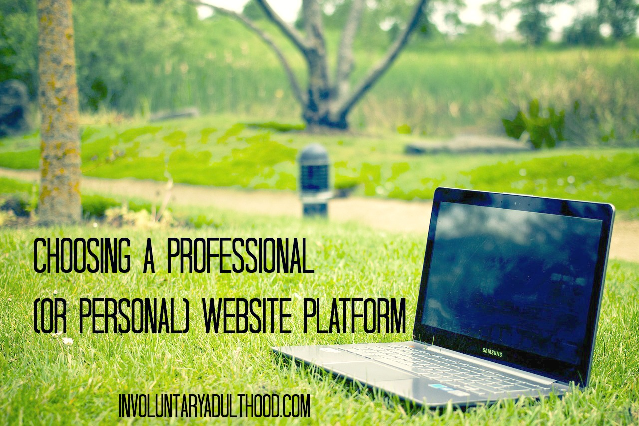Choosing A Professional (or Personal) Website Platform