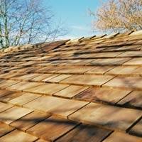 garden office roof