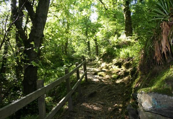 Isle Of Man Guide Ballaglass Glen