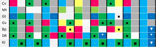 box diagram of gibbor chayil