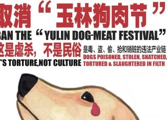 STOP YULIN ionontimangio.com
