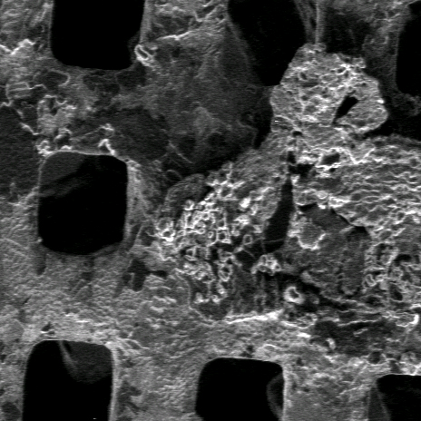 Secondary electron image of metal grid