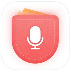 voice recorder hd logo
