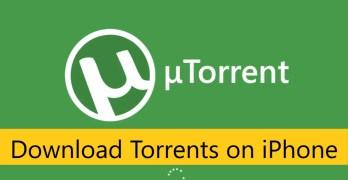Download Torrents Safely