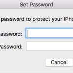 iTunes Backup Password