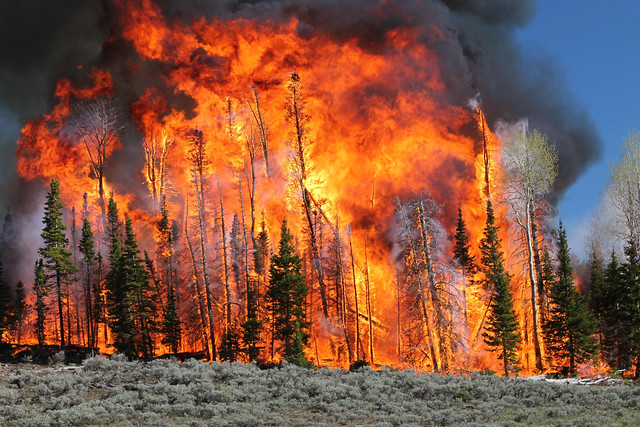 'Wildfire year' meant record days at high alert, Forest Service chief says 14