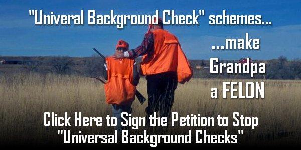 """""""Universal Background Check"""" Schemes"""