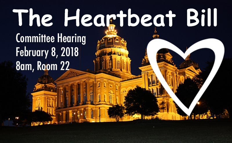 the Heartbeat Bill