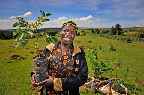 A community leader in Kenya plants a tree