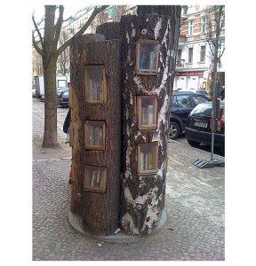 arbre berlinois