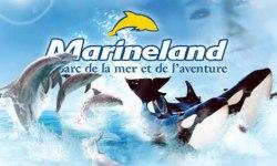Marineland è il più famoso parco della regione PACA, vicino a Antibes In Francia . Creato da più di 30 anni, il più grande parco marino d'Europa
