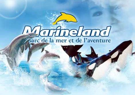 Marineland è il più grande parco marino d'Europa, si trova sul costa sud della Francia vicino al confine con l'Italia