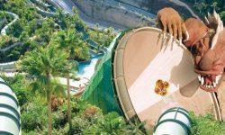 Siam Park Tenerife premiato come migliore parco acquatico 2020 del mondo
