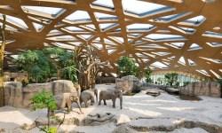 Lo Zoo di Zurigo, uno dei parchi faunistici piu grandi della Svizzera