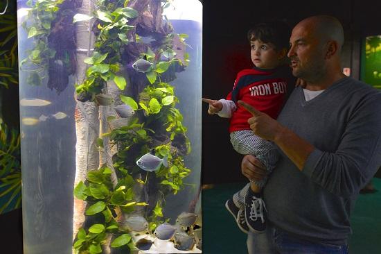 Per la Festa del Papà biglietti gratis a Gardaland SEA LIFE Aquarium
