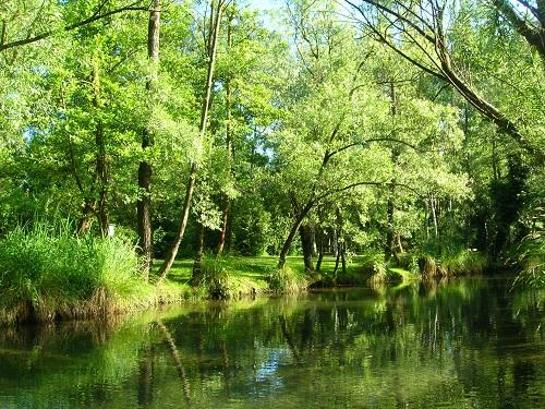 Parco Ittico Paradiso, un oasi di natura e benessere a pochi km da Milano