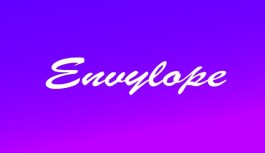 Envylope, Organise your money with ease