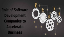 Role of Software Development Companies to Accelerate Business