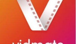 How to Install Vidmate App on iOS?
