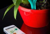 Parrot Flower Power, sensores para plantas que se comunican con tu iPhone, iPod touch o iPad