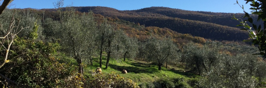 Tuscany holiday packages Follow the Etruscans