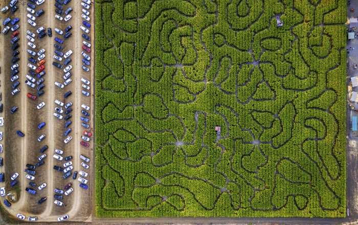 Corn maze for iPost How to Link an Email Blog