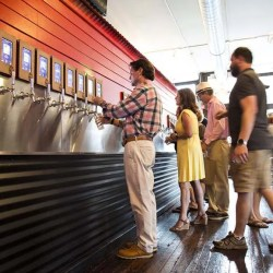 tapd-taproom-ipourit