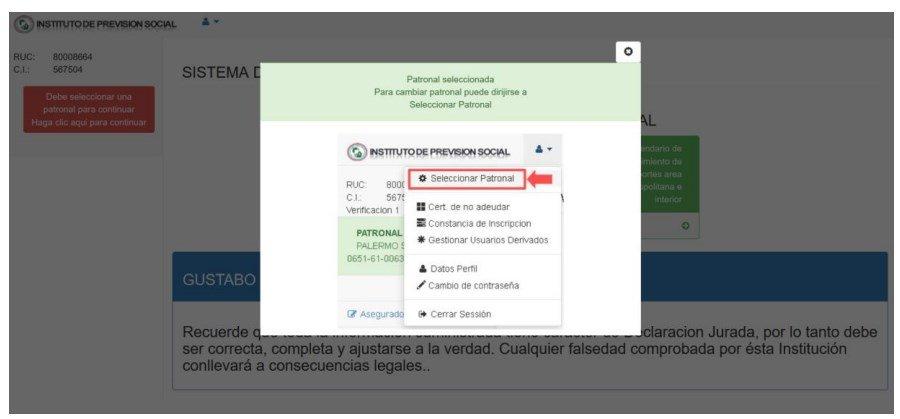 sistema rei ips manual del usuario