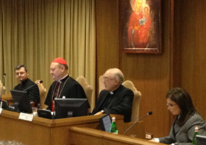 Vatican Stem Cell Meeting 2013