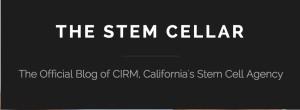 Stem Cell Blog