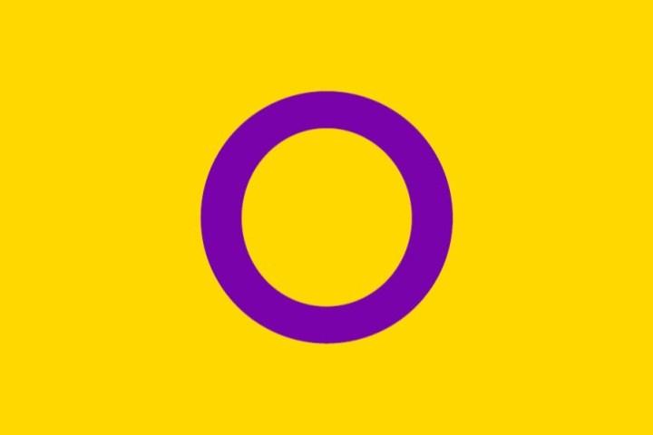 Bandera que representa a las personas intersexuales.