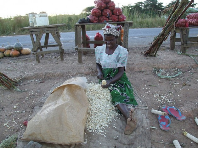 Image result for Agricultural Trade Liberalization Undermined Food Security