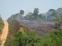 Rainforest cleared by burning in the state of Acre, Brazil.  / Credit:Credit: Mario Osava/IPS