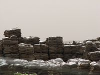 Aid meant for Gaza going waste in Egypt (Credit: Eric Cunningham)