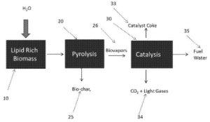 lipid-containing feedstocks
