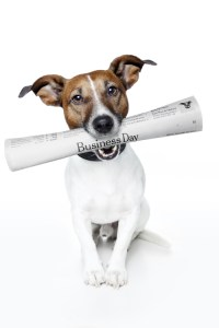 https://depositphotos.com/8650807/stock-photo-dog-holding-a-newspaper.html