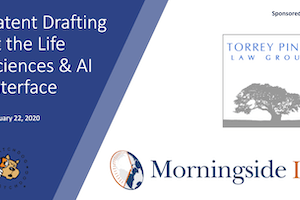 Patent Drafting at the Life Sciences-AI Interface – January 22, 2020
