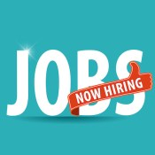Jobs Now Hiring Job