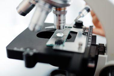 USPTO Director, Pharma, https://depositphotos.com/138070278/stock-photo-sample-of-new-vaccine.html