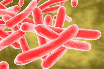 tuberculosis - https://depositphotos.com/78119374/stock-photo-mycobacterium-tuberculosis.html