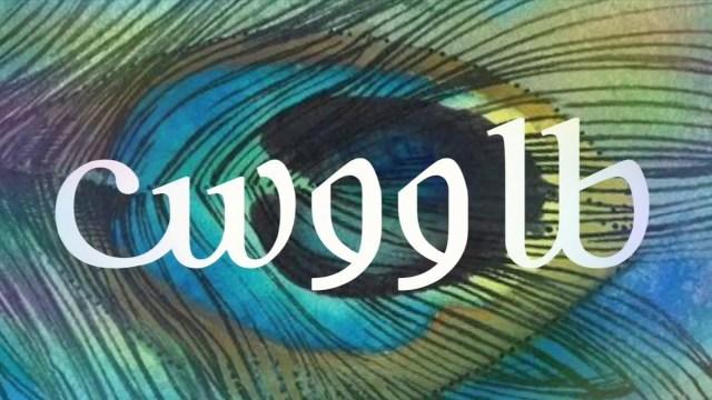 كلمات اغنية طاووس عيسى المرزوق