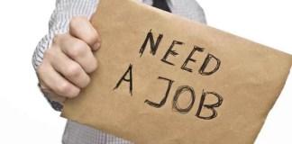joburi pentru tineri și studenți
