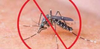 cum ții țânțarii la distanță