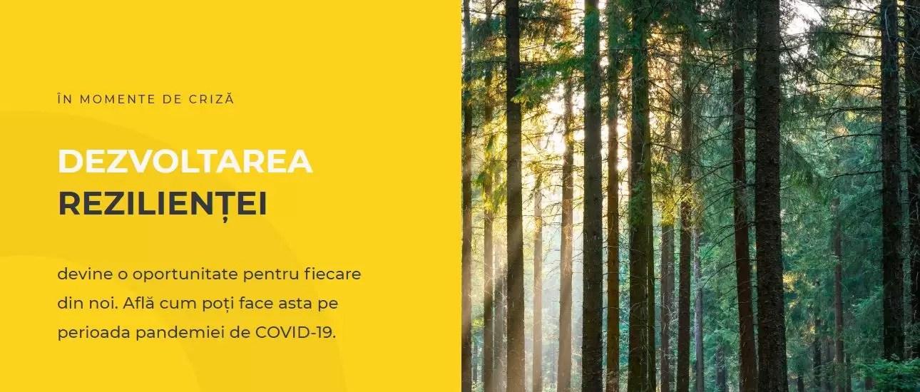 platforma online Rezilienta.eu afiș