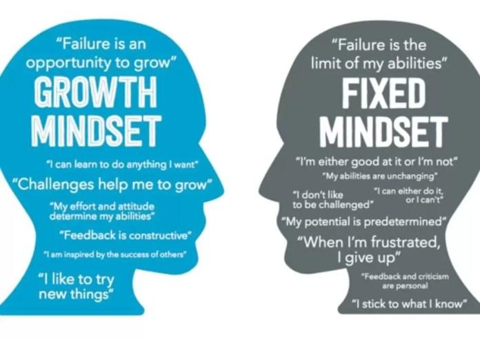 mentalitate bazată pe dezvoltare vs mentalitate fixă