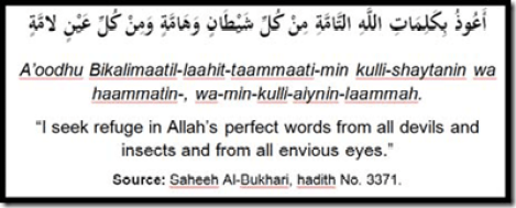 dua satan treatment protection quran verses