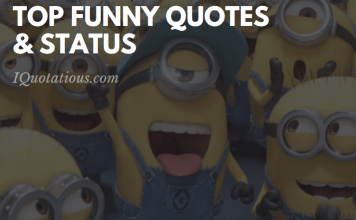 Top Funny Status and Quotes - Laugh out Louder Funny Quotes