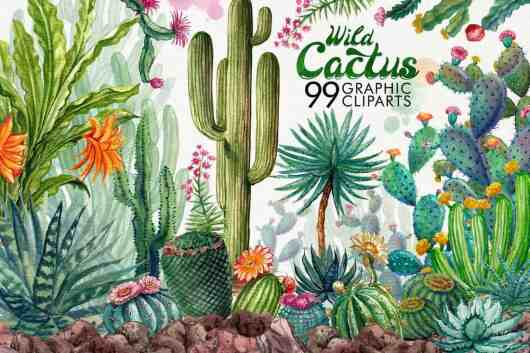 Watercolor Cactuses Clipart & Patterns
