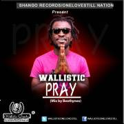 Download Music: Wallistic - Pray( Mix By Beatzhynex)