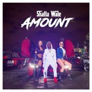 Download Music Video: Shatta Wale – Amount (Official Video)